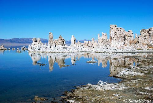 Feb 15 - mono lake