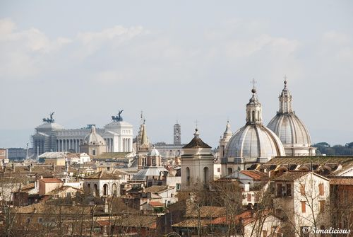 Feb 18 -rooftops in rome